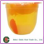 Polpa de frutas geléia