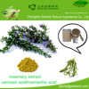 /product-gs/100-pure-natural-preservative-rosemary-extract-rosemary-acid-rosmarinic-acid-rosemary-oil-carnosic-acid--60355557802.html