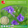 Manufacturer Supply Herba Scutellariae Barbatae Extract