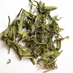Tian ye ju herb medicine hot sale China Sweetener Supplier Stevia In Bulk