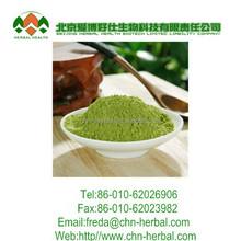 matcha powder / new season matcha /matcha green tea
