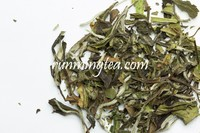 Loose Leave Best White Tea Brands