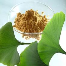 ginkgo biloba extract pure
