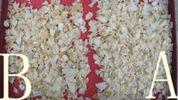 dehydrated white onion flakes10*10