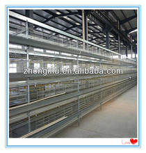 Hot sale chicken cage used automatic poultry farm equipment