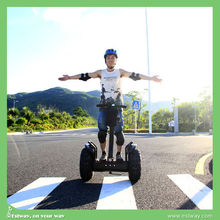 Hot-Selling newly off road electric chariot, China cheap electric motorcycle