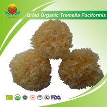 Manufacturer Supply Dried Organic Tremella Fuciformis