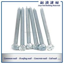 Concrete Nail/Common Nail /concrete steel nail