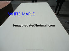 Rotary cut white maple fancy plywood