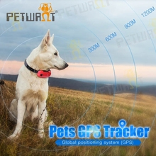Amazon hot selling long battery life gps cat tracking collars