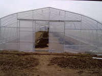 Agricultural single tunnel/gutter connect greenhouse