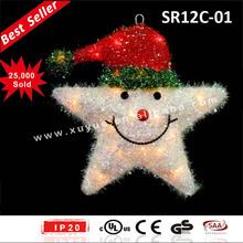 LED Lighted christmas star with lights