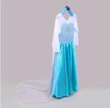 película Frozen cosplay Actuación ropa La princesa de Sally, amo princesa galas Azul de traje de novia Vestido de navidad niñas