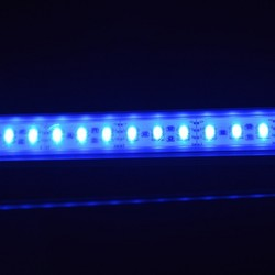 Good quartiy SMD3528 flexible led strip lights ,60 LEDs/m, IP65 silicone glue waterproof, blue color, Epistar Chips in SMD3528