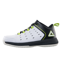 PEAK Sports Summer Top Quality Lightweight Mesh Professional Athletic Basketball Shoes for Men