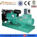 أنواع 20kw-1000kw مولدات الطاقة الكهربائية مع شهادة ce
