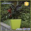 Chinese glass vase hydroponics flower pots