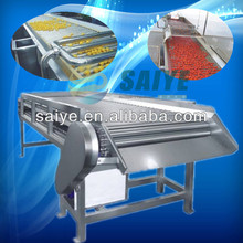 SYJJ-20 fruit and vegetable selecting/sorting machine