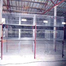latest design layer dorking chicken cage