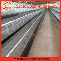 Automatic Poultry Shed for broiler feed