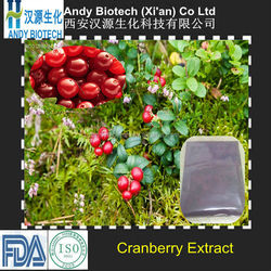 Sell Off Pure 15% Proanthocyanidins Cranberry Fruit Extract