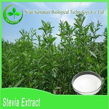 100% pure organic Stevia Leaf Extract wholesale with Stevioside, Rebaudioside A