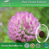 Red Clover Extract, Red Clover Extract powder, 20% Isoflavones