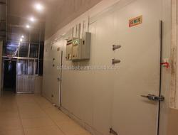 Hot saling Factory supply cold storage/solar powder cold room/blast freezer cold room