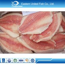 China mariscos sanos tilapia pescado