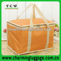 insulated bag for frozen food
