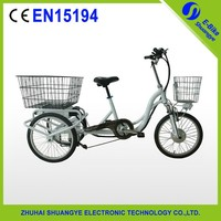 36v 250W CE three wheel electric tricycle for disabled