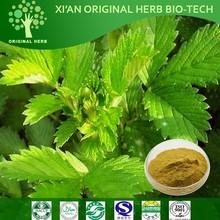 Chinese Herb Xian He Cao/ Hemostyptic Herba Agrimoniae Extract