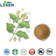100% Natural Ramulus Uncariae Cum Uncis / Gambir Plant Extract / Aharpleaf Ucaria Stem with Hooks Extract