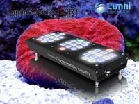 China supplies Lumini Aqua System acrylic aquarium fish tank