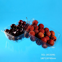 blister transparent cherry tomato fruit packaging tray