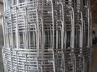 hot sale galvanized sheep wire mesh fence grassland fence ( factory )