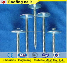 kenya market roofing nails carry an umbrella hat bottom price