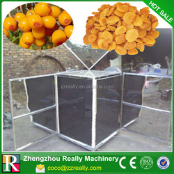 commercial stainless steel pumpkin seeds vacuum dryer for fruit and vegetable