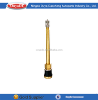 Hot sale best price semi steel car tyre valve