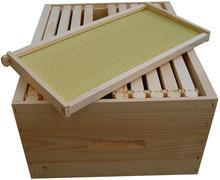 nuovo design in legno orticaria apicoltura