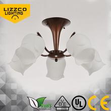 Alibaba best quality top level modern ceiling light DSC_2890