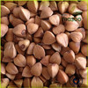 Buckwheat with husk, Raw Buckwheat from China