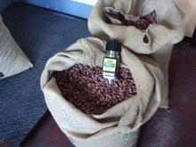 cocoa beans, organic, utz