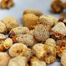 100% dried raspberry fruits raspberry importers