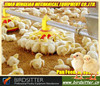 Best chicken broiler automatic livestock feeders for sale