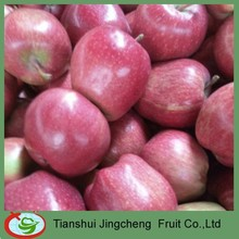 Fresh huaniu apple fruit price