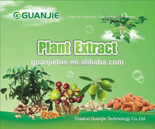 2015 hot sale loquat leaf extract supplier