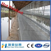 good quality commercial chicken house for hens