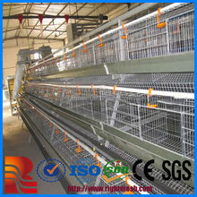layer poultry cages for kenya farms,layer chicken cagefor sale