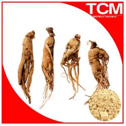 panax ginseng 20% ginsenosides/korean red ginseng extract/red panax ginseng extract
